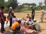 Daging Qurban
